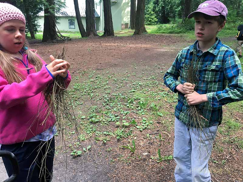 Breaking up hemlock branches for the fire challenge