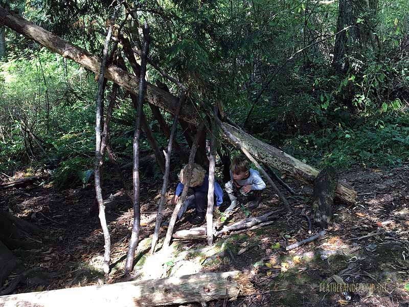 The start of our shelter at Forest Home