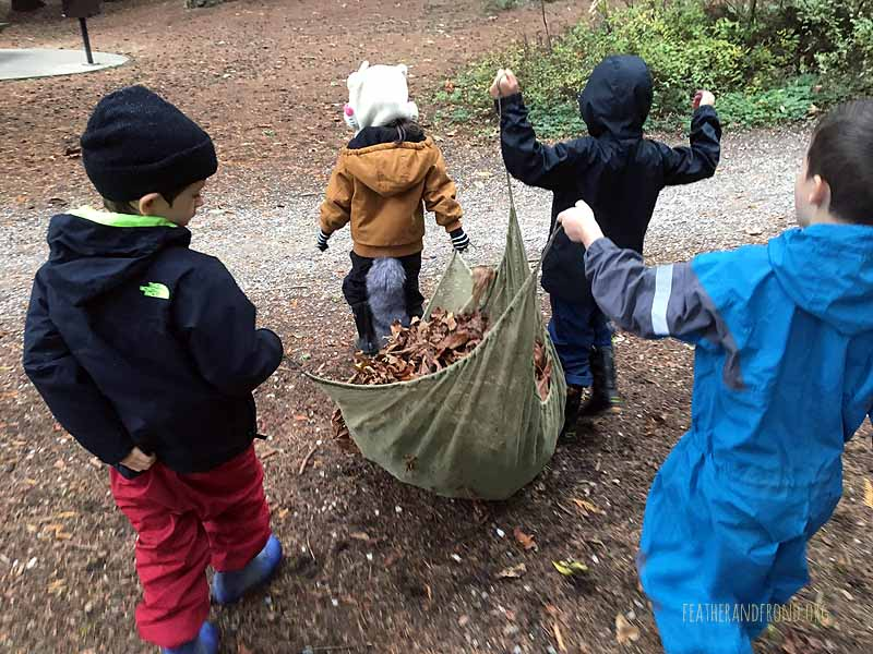 Hauling Big Leaf Maple leaves