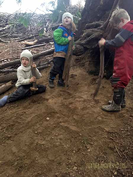 Digging in the fairy house zone..