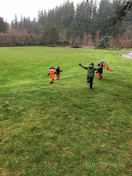 the joy of kite-flying!