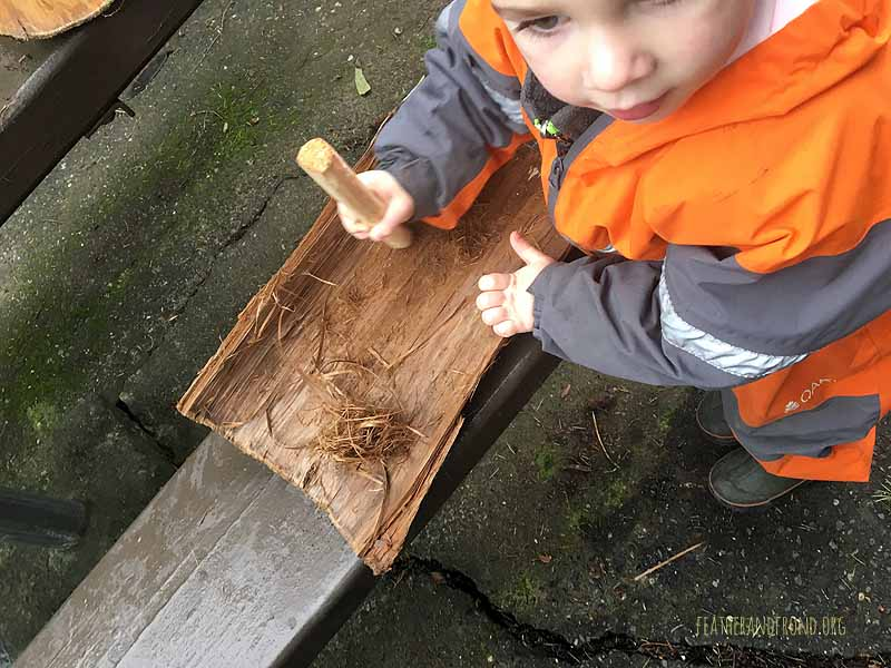Scraping inner bark of Cedar to make a tinder bundle!