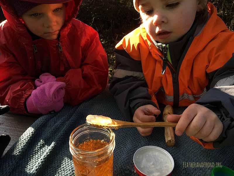Making Oregon Grape Root Hand Sanitizer