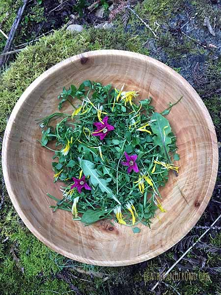 Check out this beautiful wild salad. So colorful and full of nutrition!