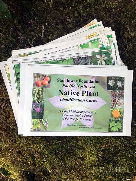 These Free printable plant ID cards are a great resource!!