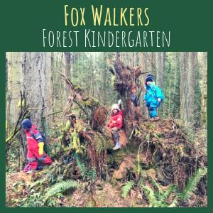 Fox Walkers      1, 2 or 3 Days a Week   4-6 Yr. Olds