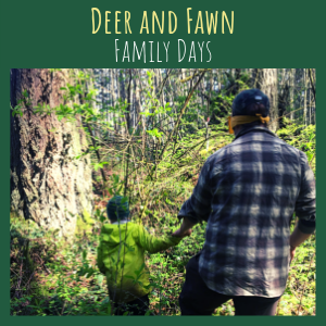 Deer and Fawn Family Days Program