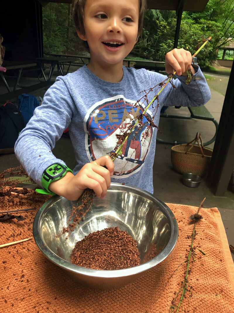 Happily processing some dock seeds with clean Raccoon Hands!