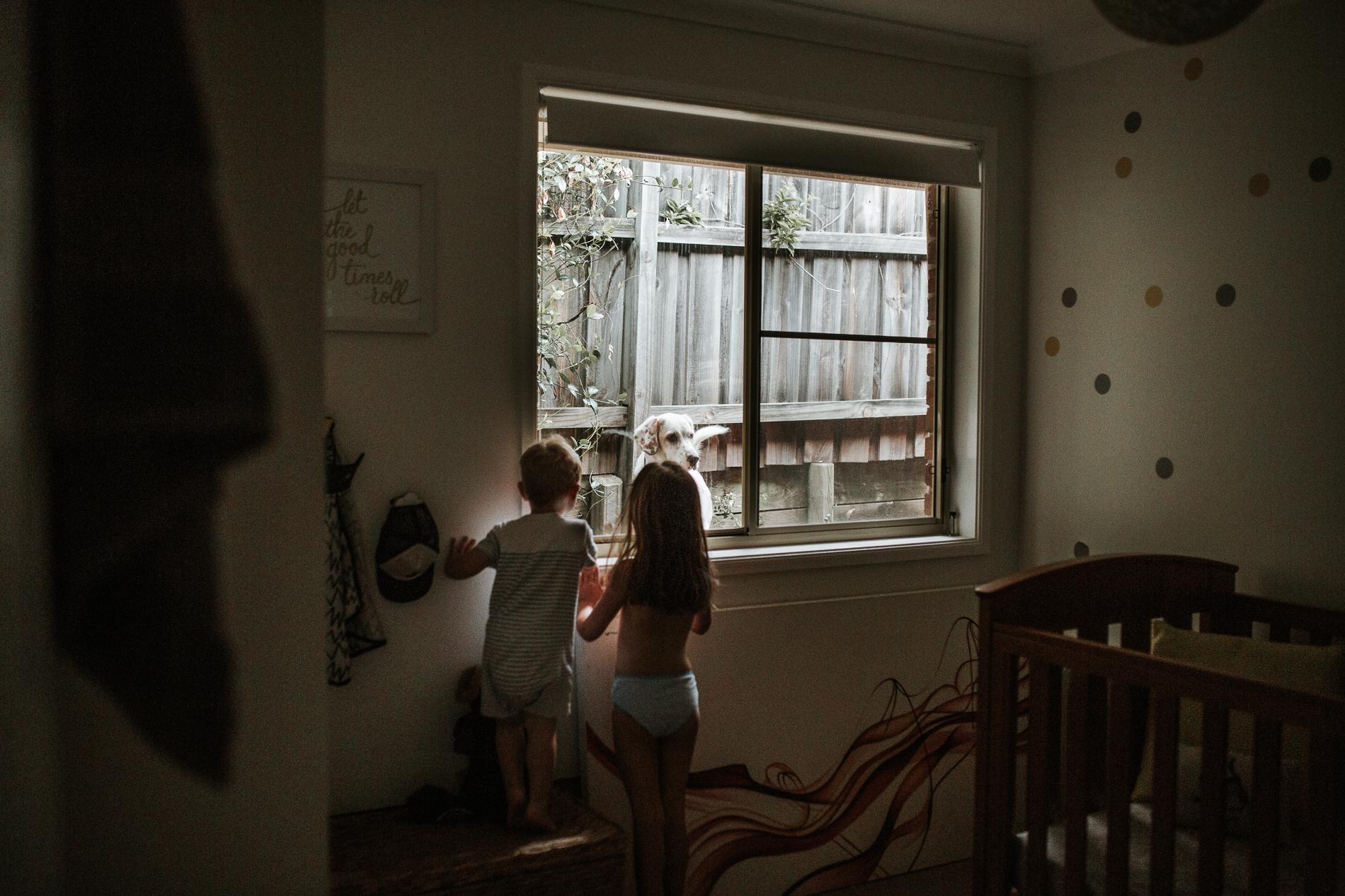 20170204_Sydney_Family_Photographer_ 8544.jpg