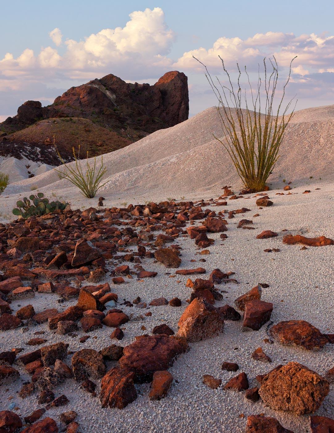 Big-Bend-National-Park-ABP-Cerro-Castellan_sunset.jpg