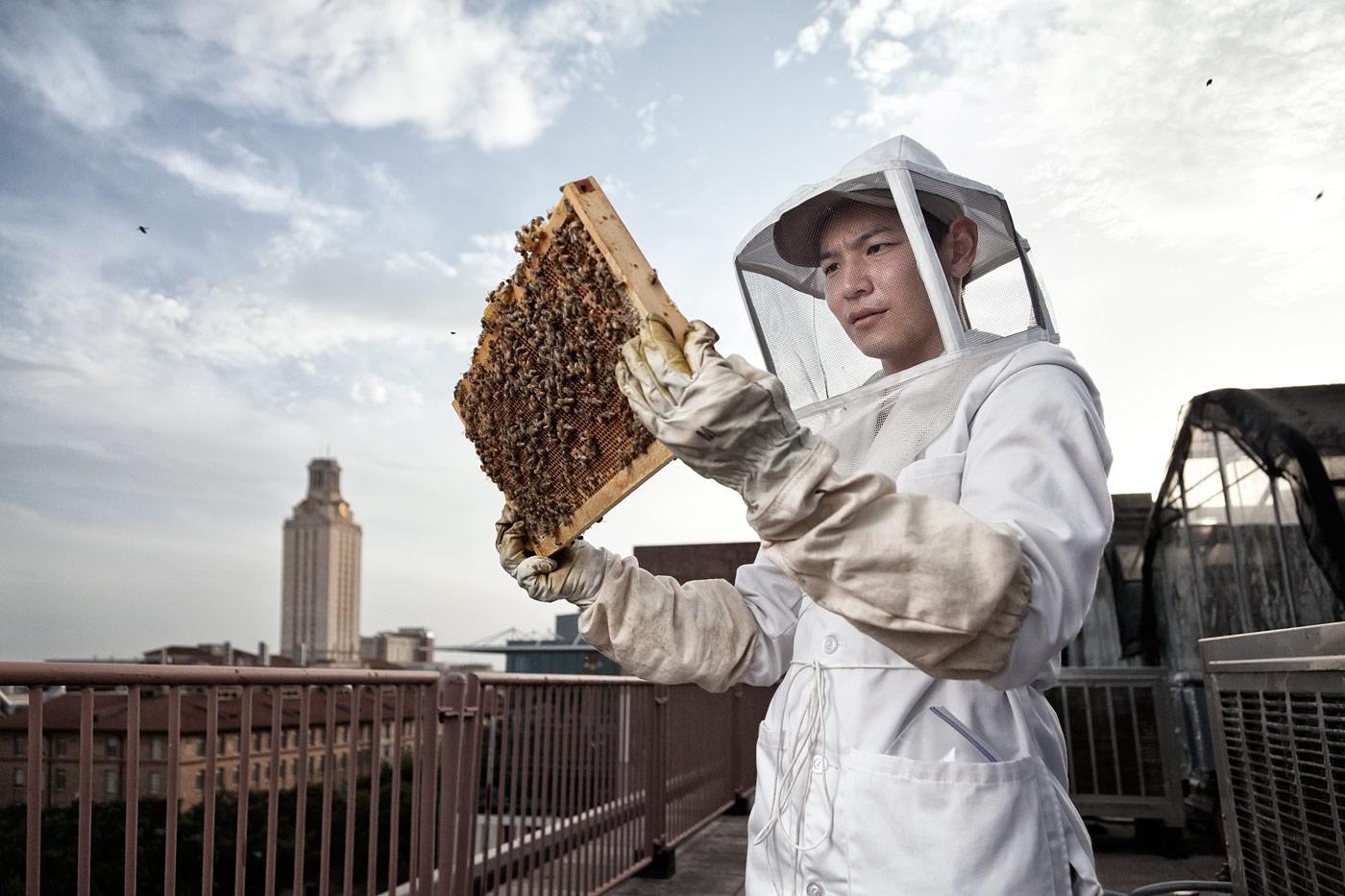 Editorial-ABP-beekeeper-university-of-texas.jpg