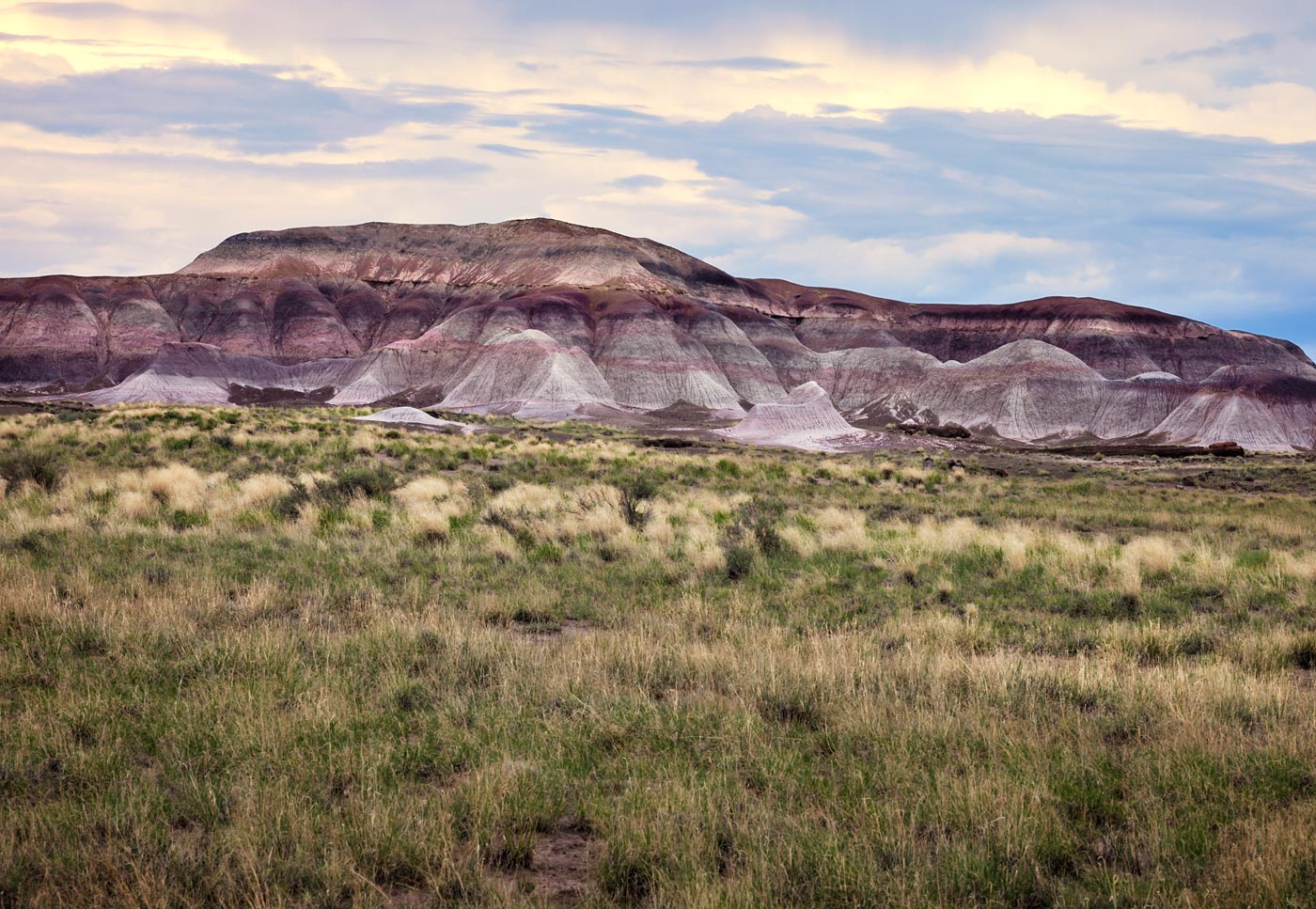 Petrified-Forest-National-Park-ABP-Grassland_Strata.jpg