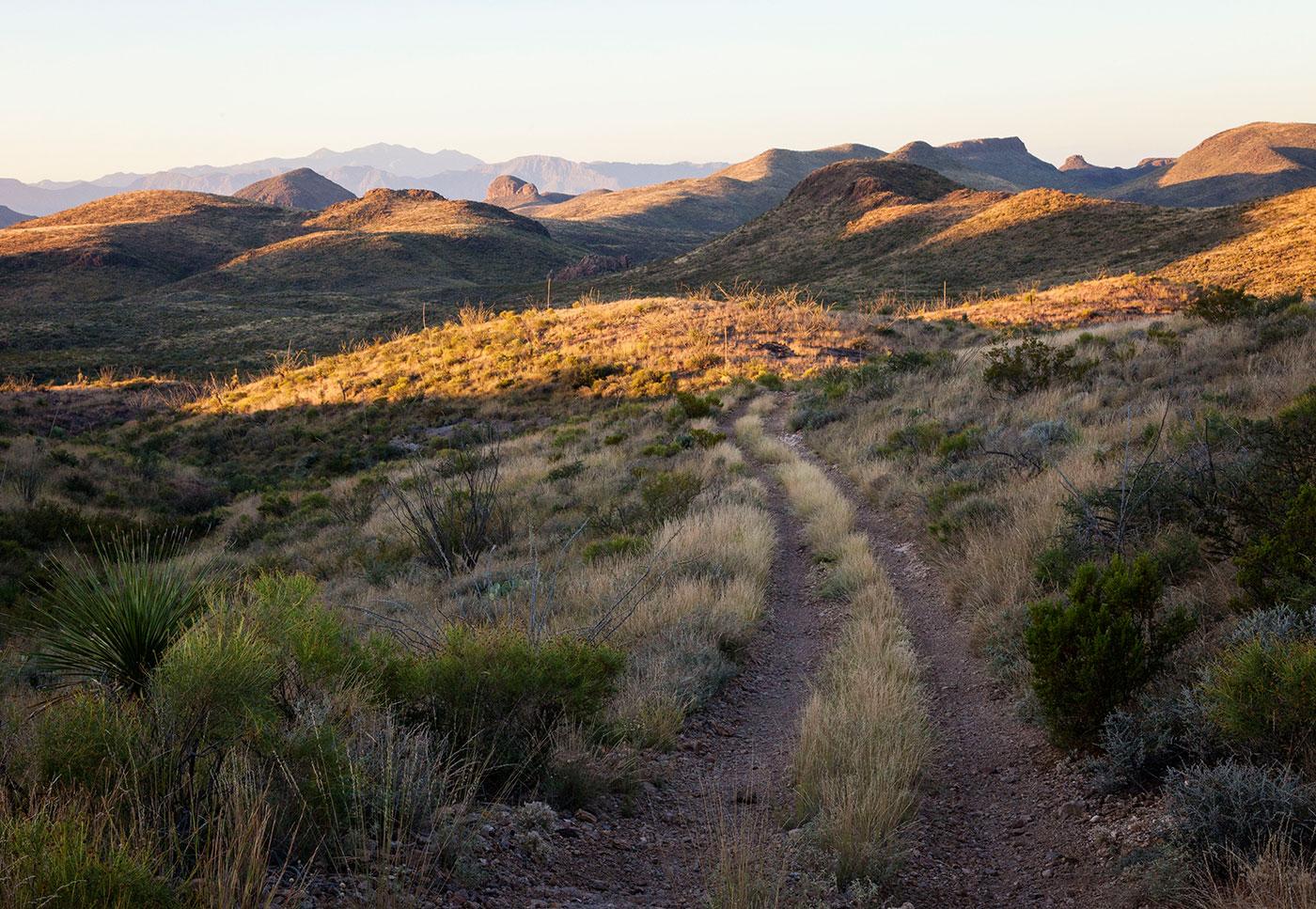 Trans-Pecos-Ultra-ABP-Guale-Mesa_sunrise.jpg