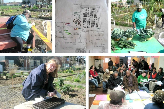 Top Left: Linda painting community plot sign; Top Middle: Map of community designed Unthank Eilliot Garden site; Top Right: Community harvest from Seeds of Harmony Garden; Bottom Left: Barbara leading seeding training; Bottom Right: Seeds of Harmony community-led gardener meeting.