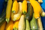 village-gardens-farmers-market-4.jpg