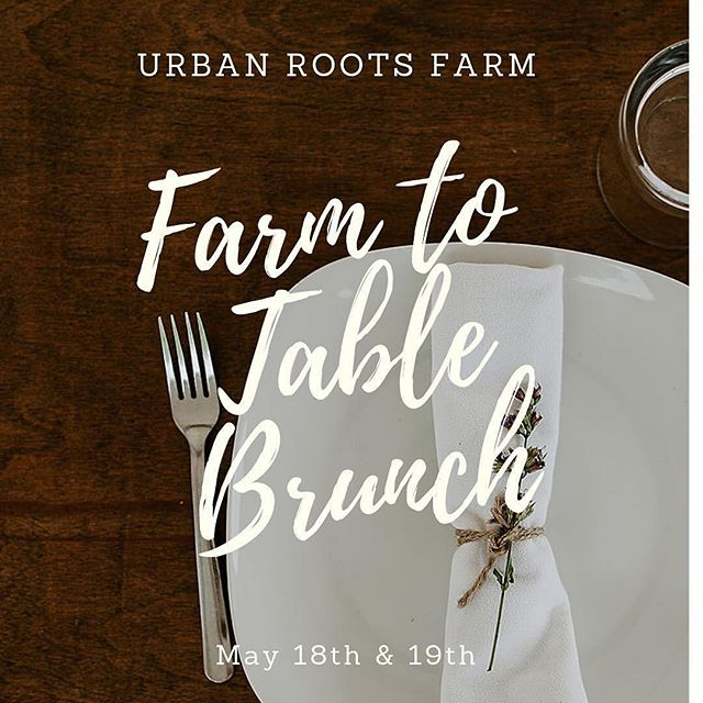 Our friends at @urbanrootsfarm are hosting a Farm to Table Brunch! May 18 & 19 ✨ They have an incredible menu planned. Get your tickets for this amazing event!