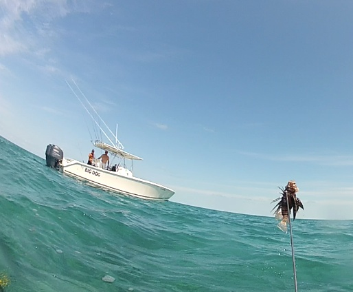Doing our part to manage the lionfish population
