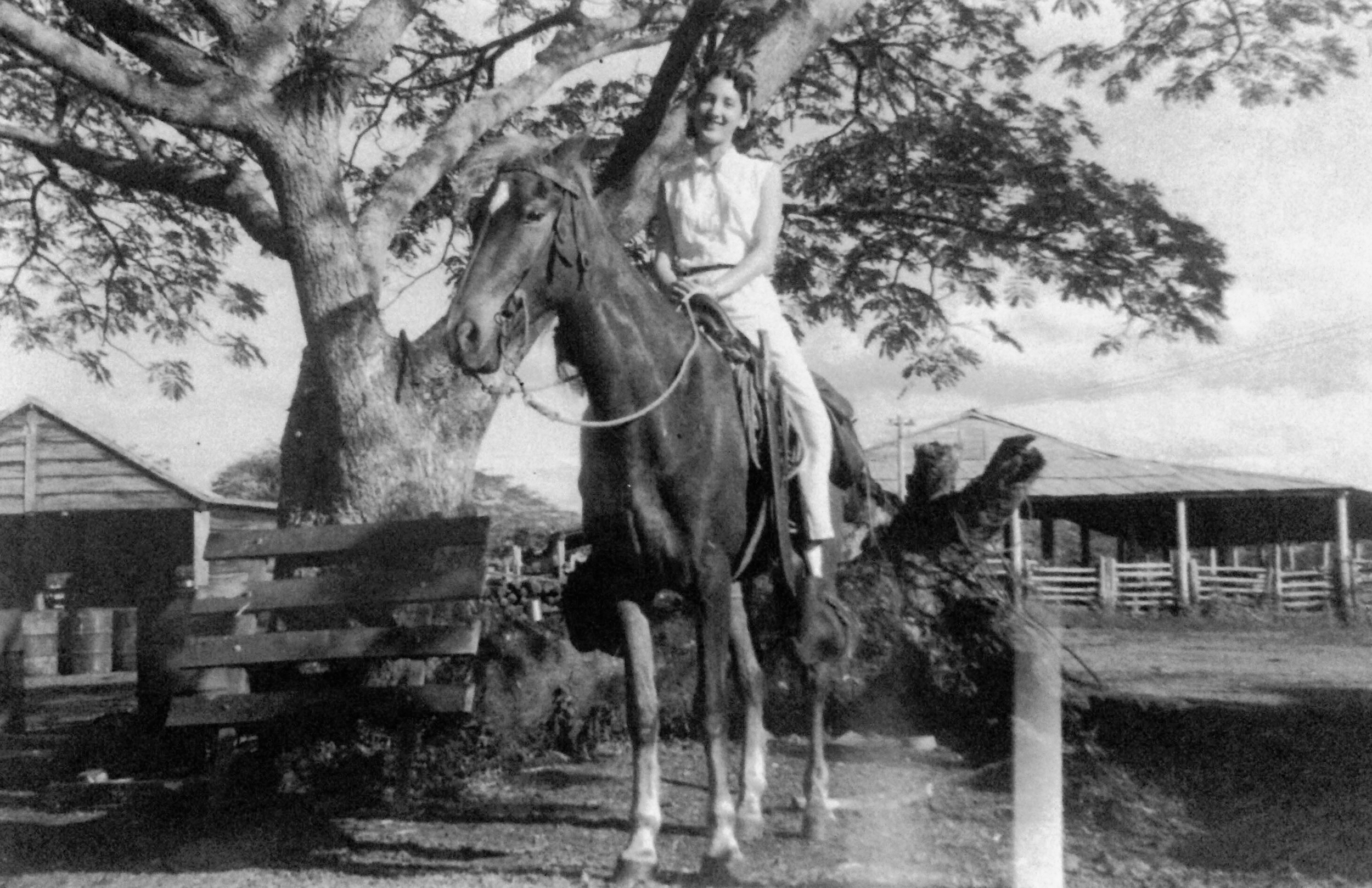 The photo of my grandmother on her horse with one of the three ceiba trees landmarks in the background