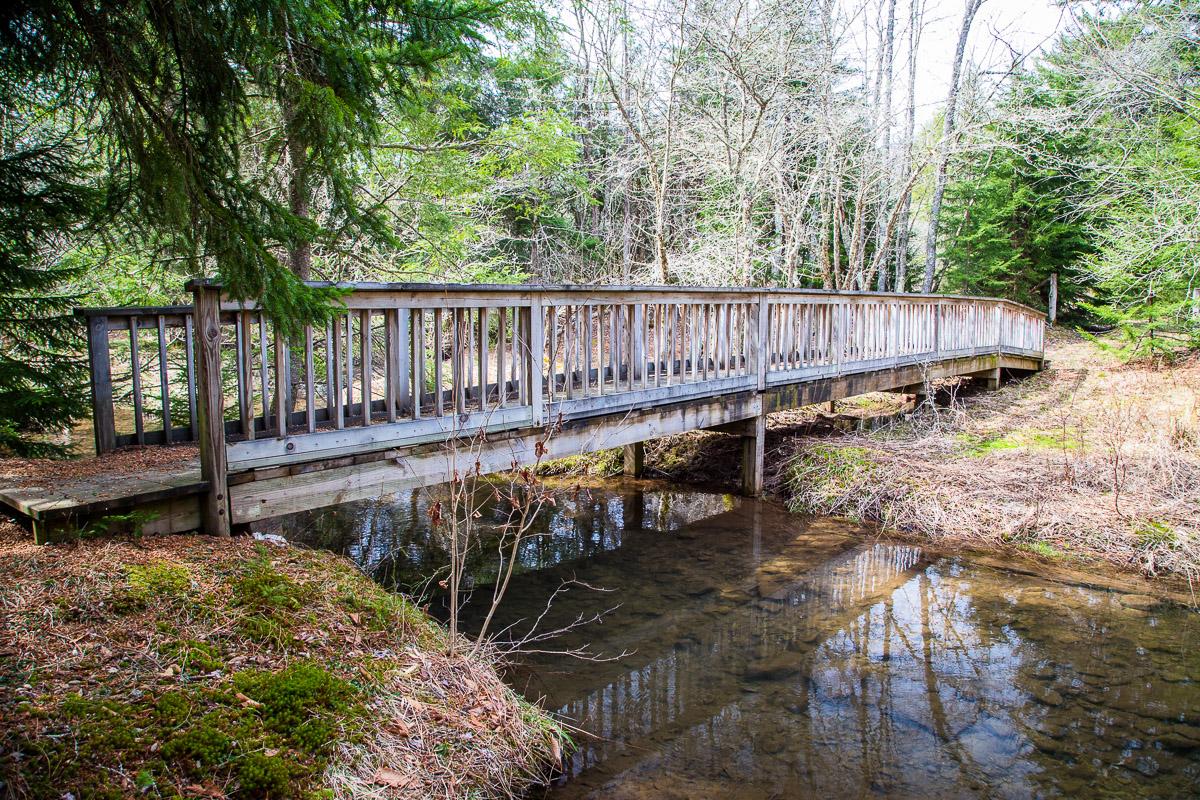 Footbridge over Glady Fork