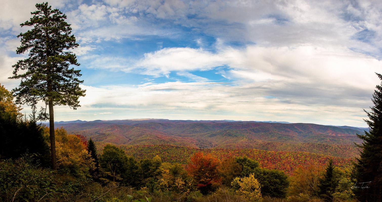 Fall Foliage at Gaudineer Scenic Area