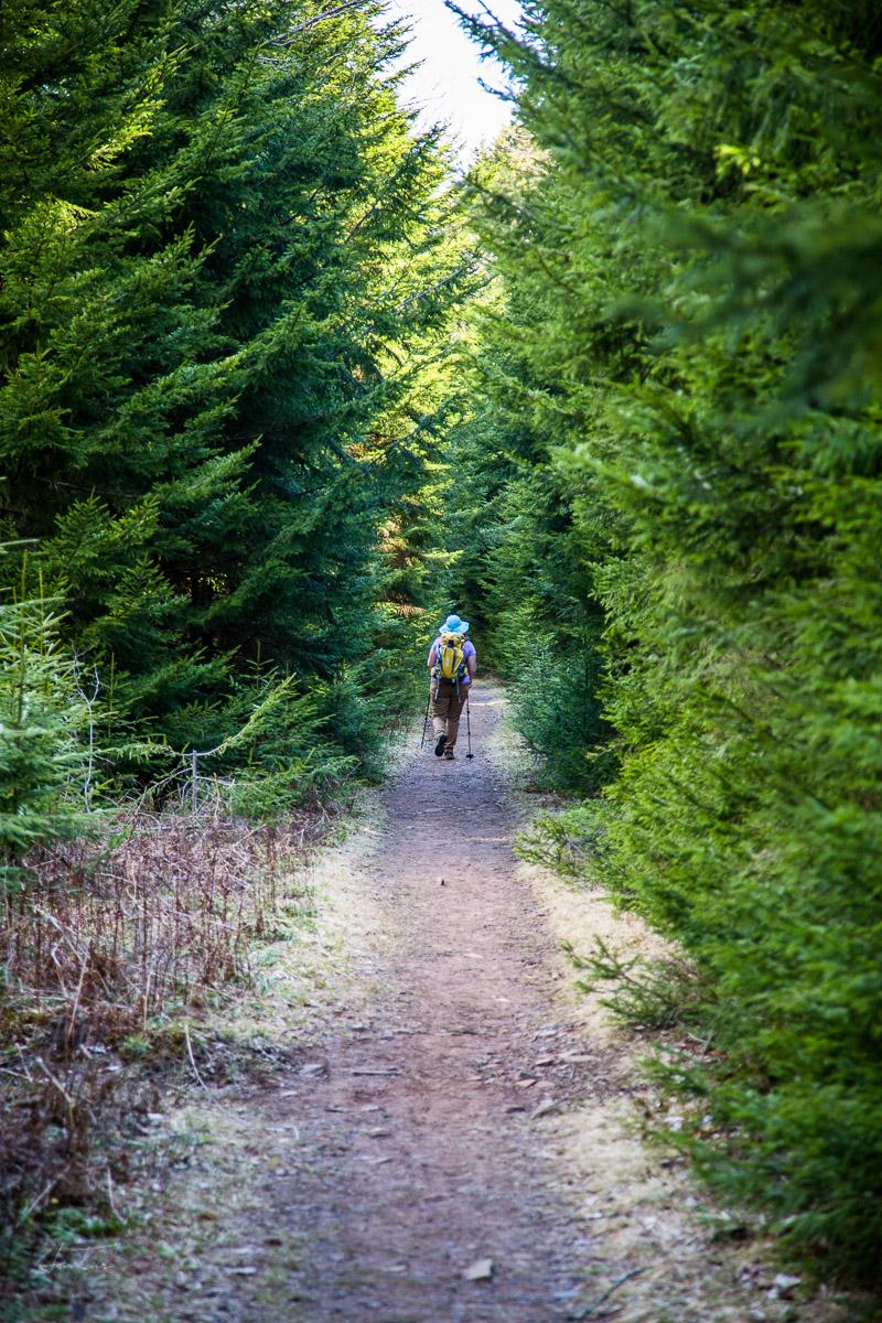 Seneca Creek Trail