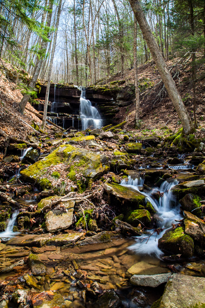 Unnamed Tributary of Seneca Creek