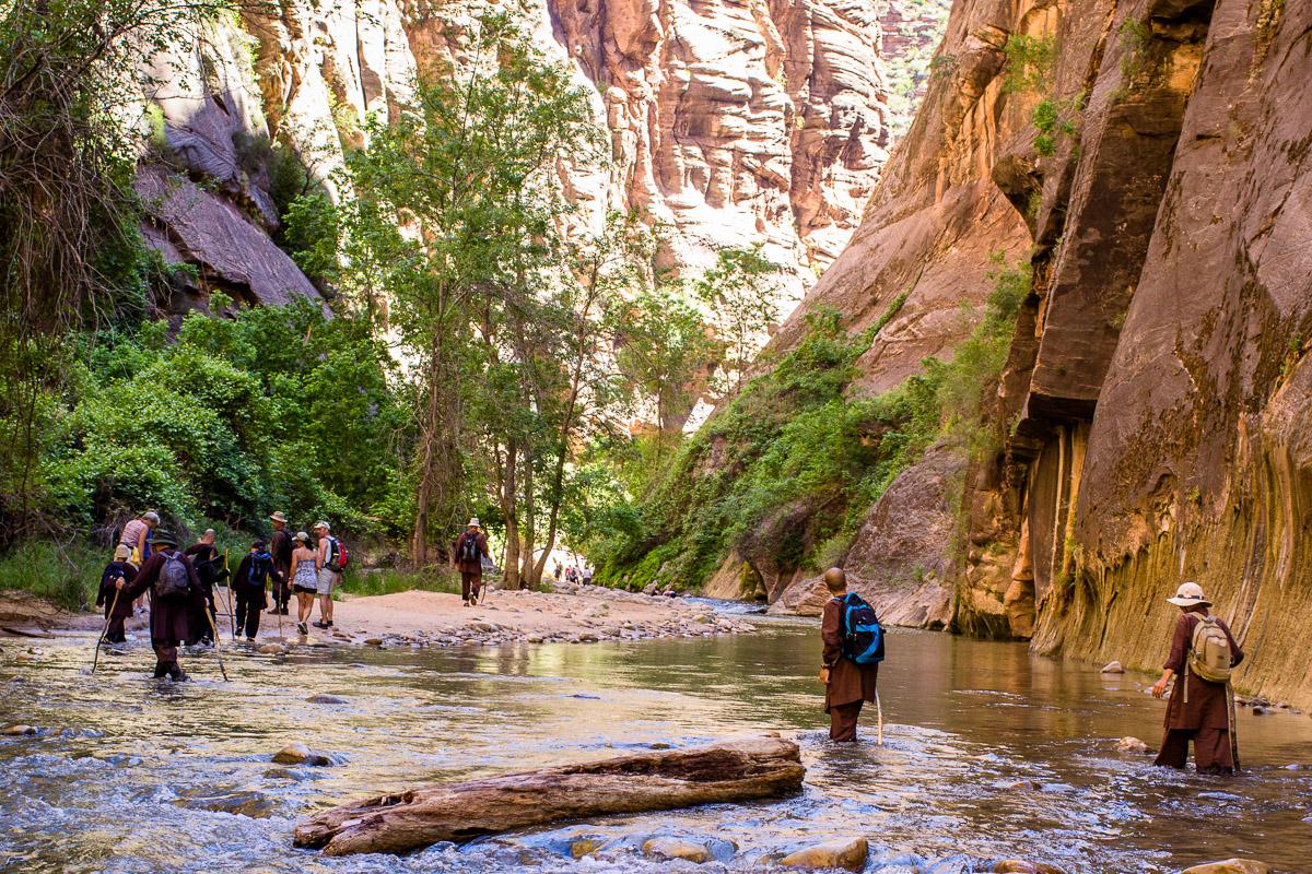 Zion Narrows Wilderness