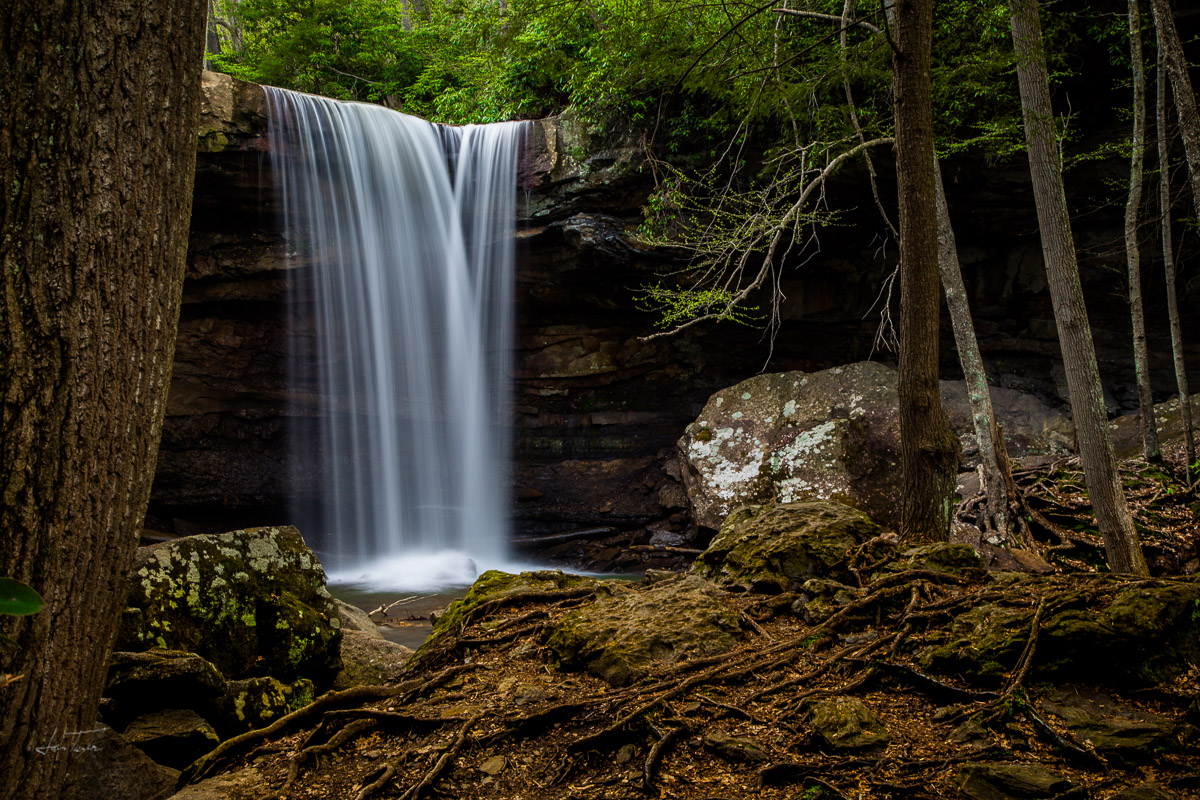 Midweek at Cucumber Falls - Pennsylvania