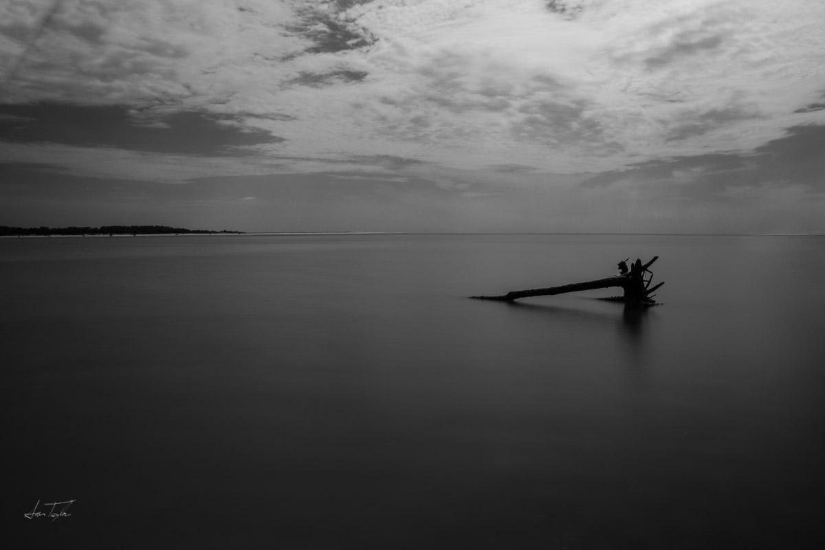Boneyard Beach - Florida