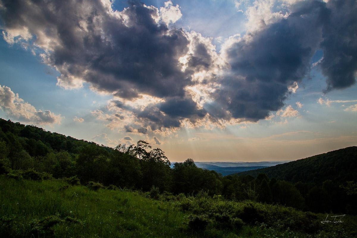 The Phoenix - West Virginia