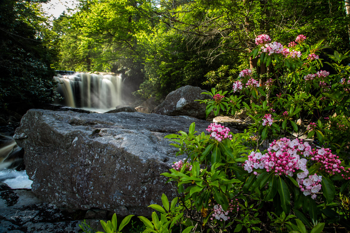 Splendour in the Mountains - West Virginia