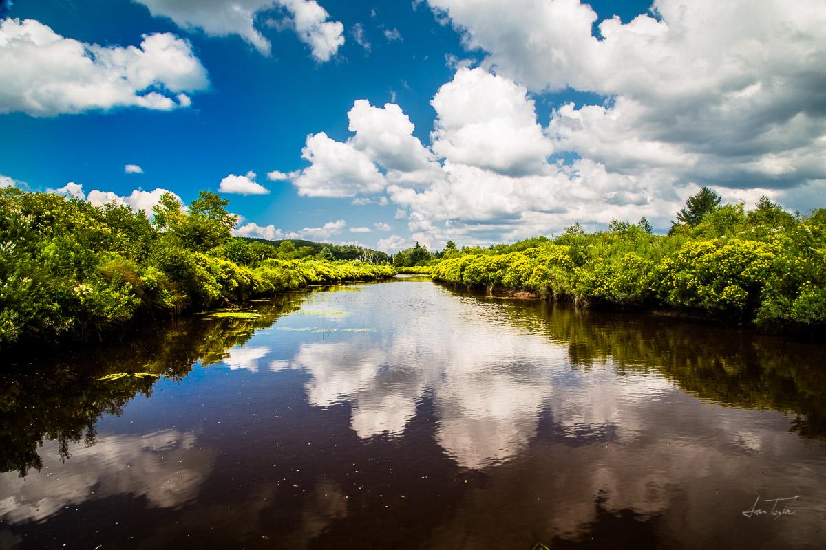 Summer Reflections on Beaver Creek - West Virginia