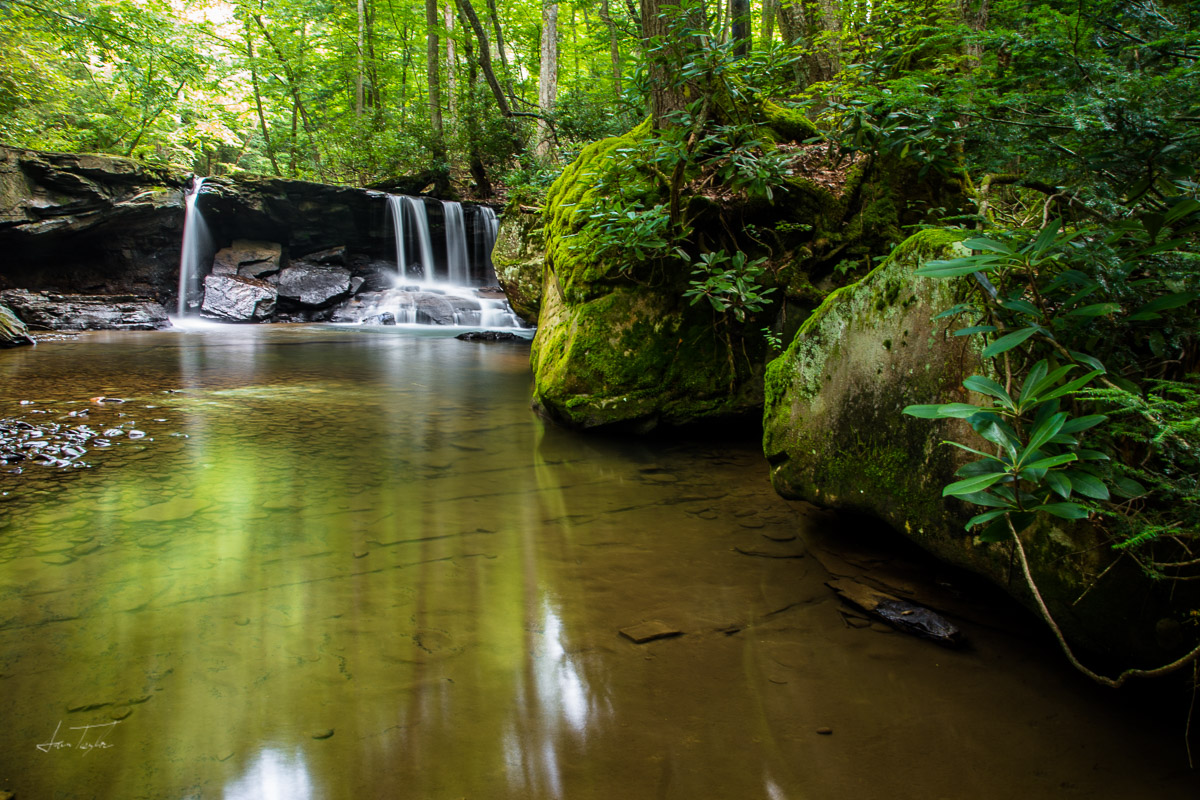 Who Is Your Decorator? (Holly River Falls) - West Virginia