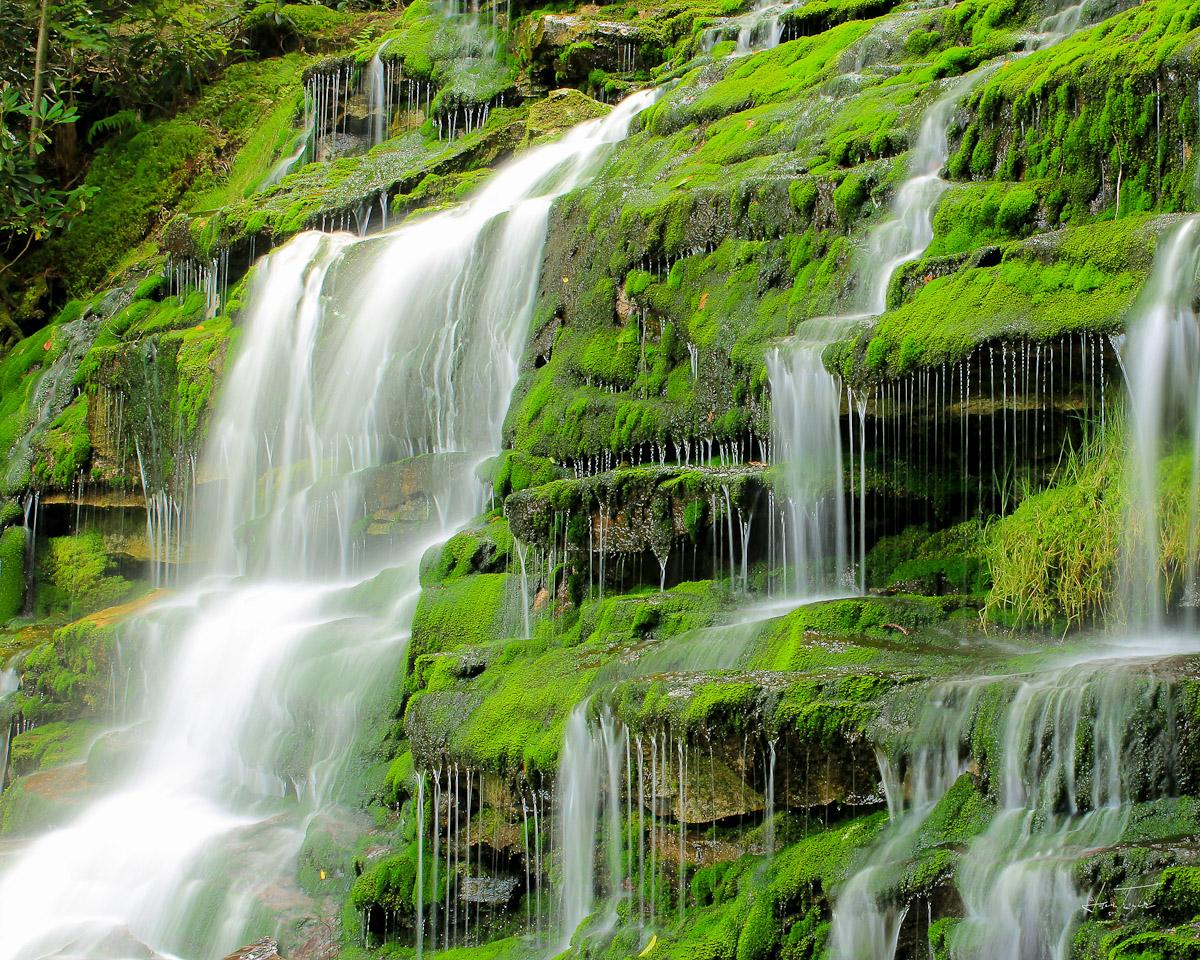 Water Is Life - West Virginia