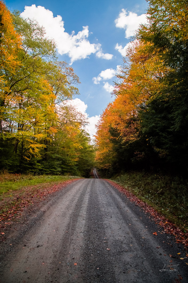 The Golden Road - West Virginia