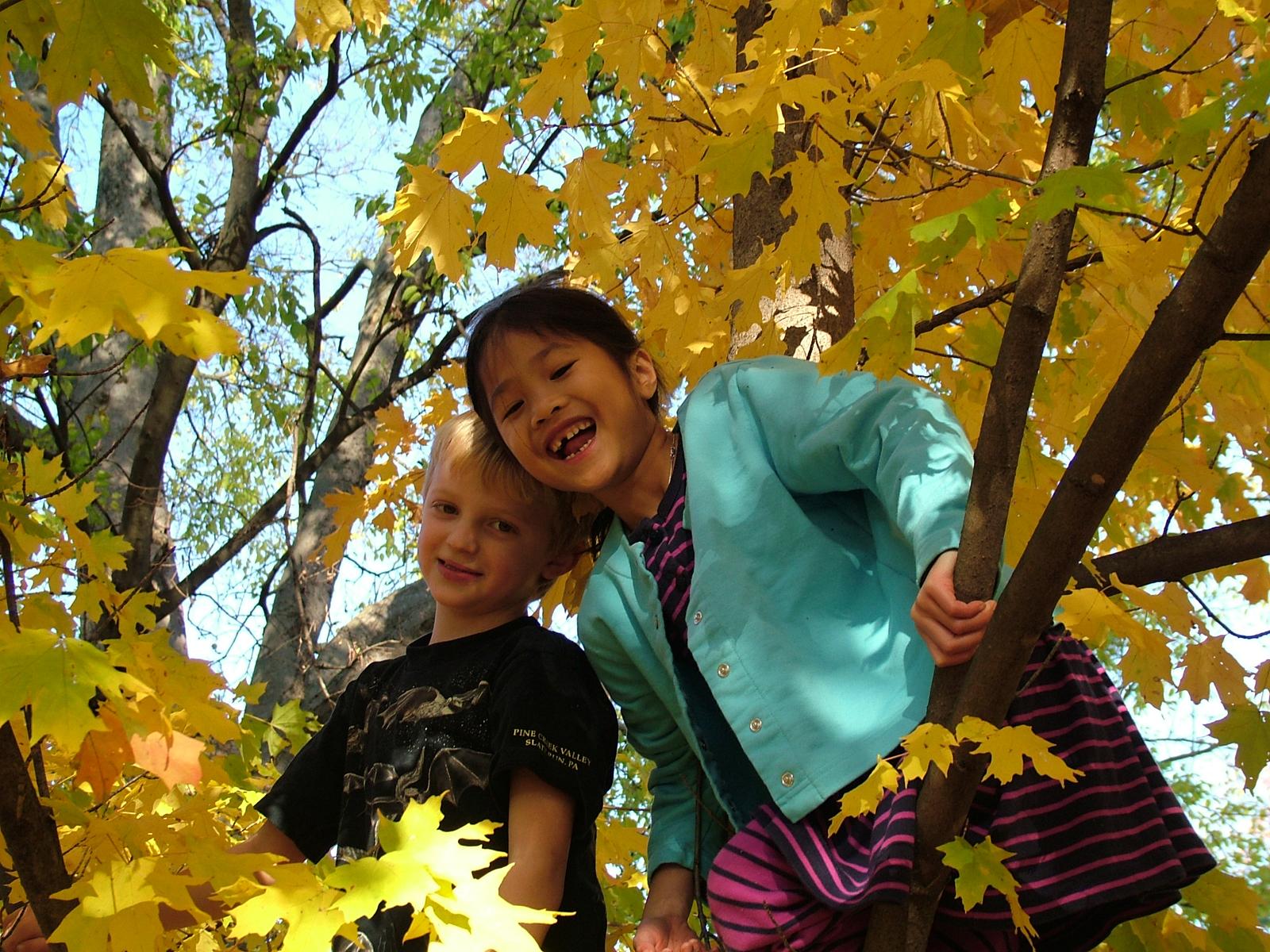 sisters-1308742.jpg
