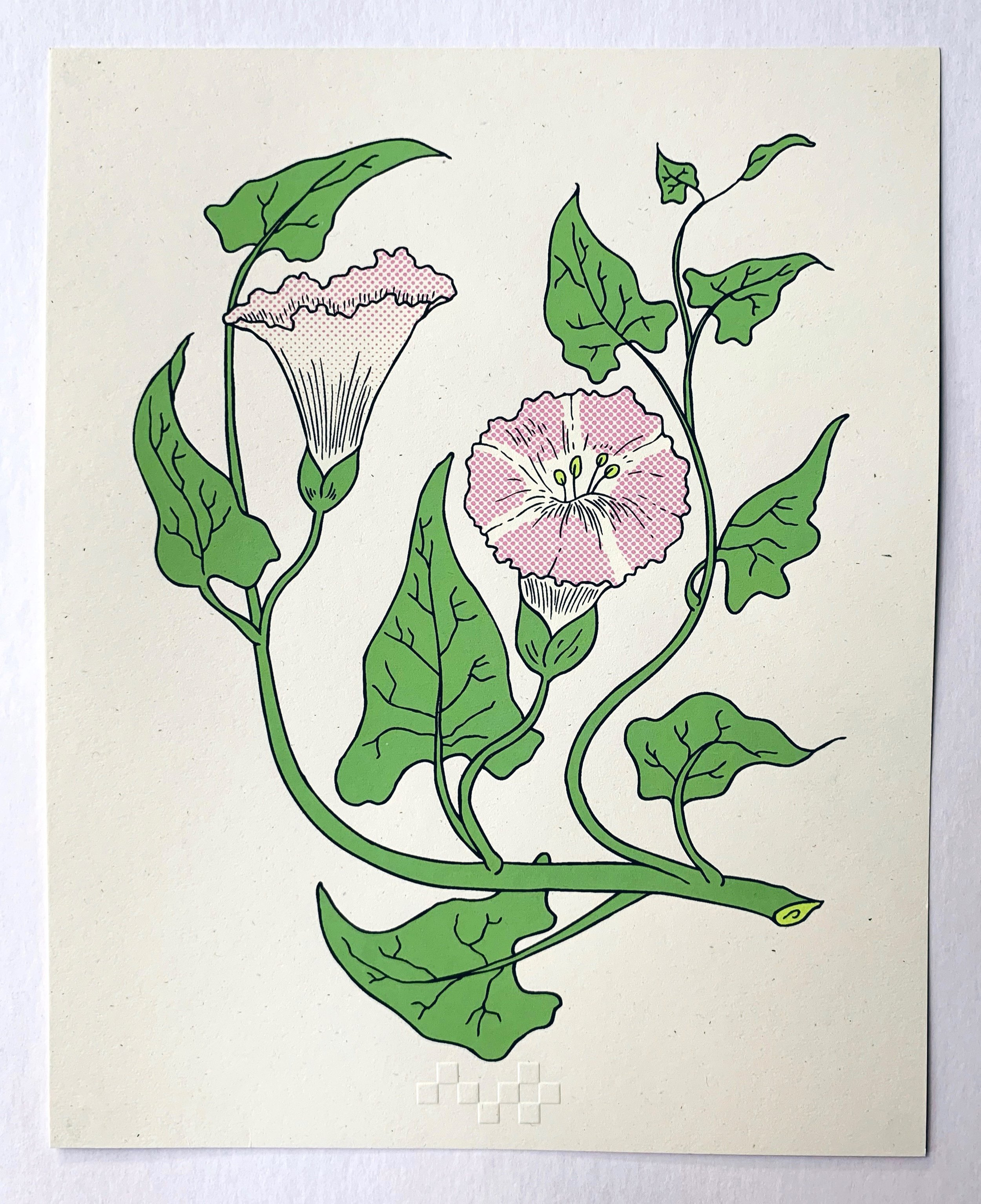 Hedge Bindweed: passage to death, serigraphy, 2018