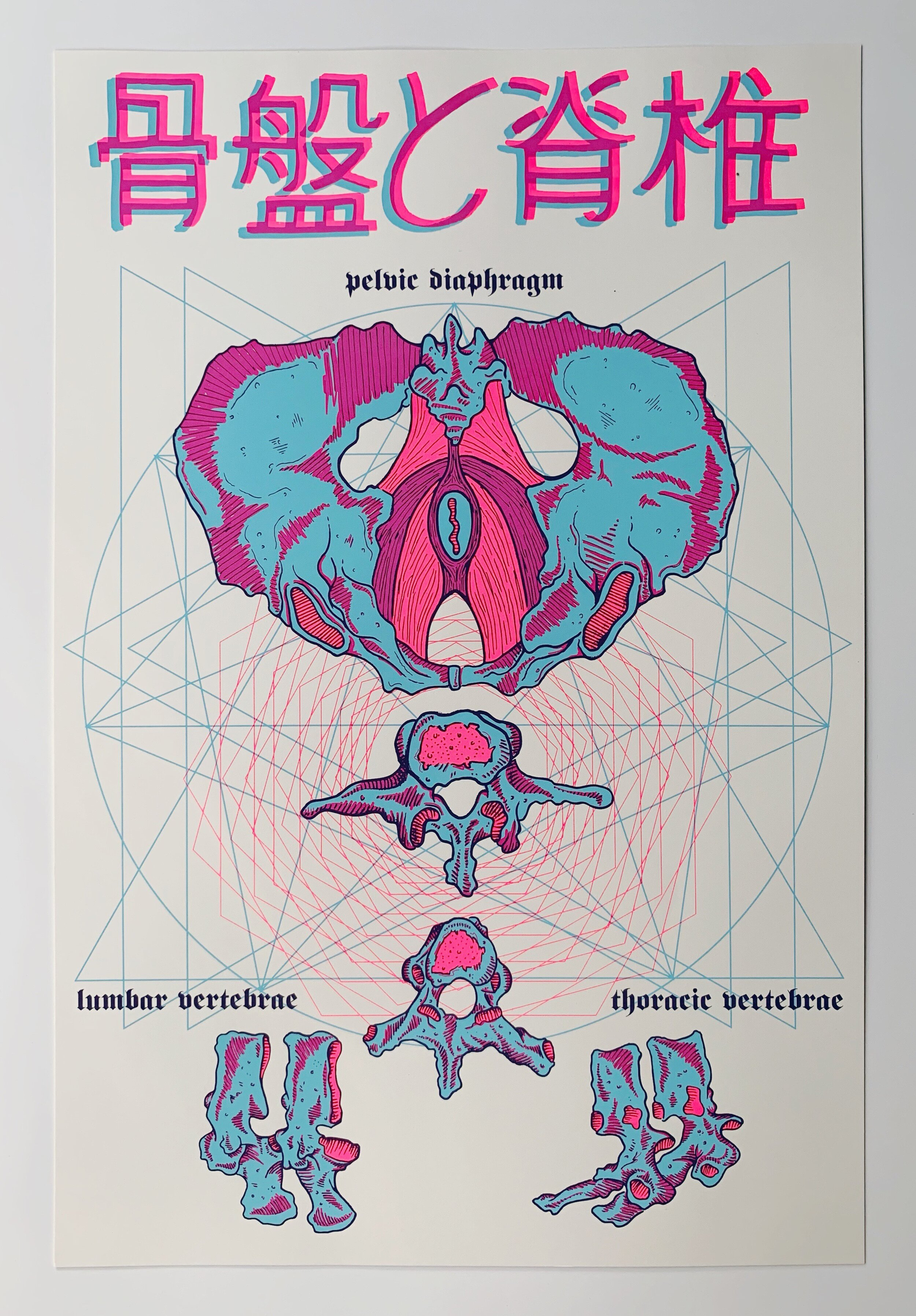 anatomic divinization, serigraphy, 2015