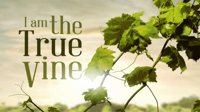 i-am-the-true-vine-1-638.jpg