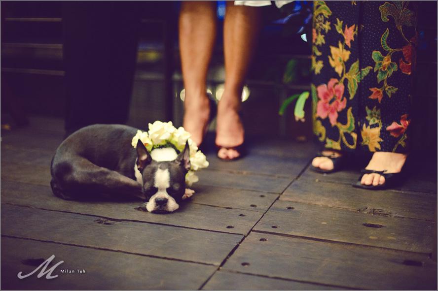 Penang_Wedding_Malihom_075.jpg
