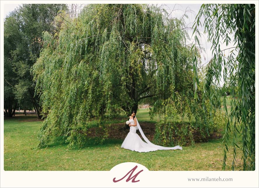 destination-wedding-australia_0040