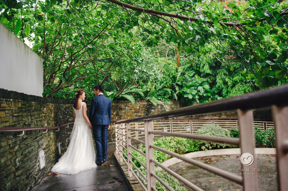 prewedding photo at botanic garden singapore