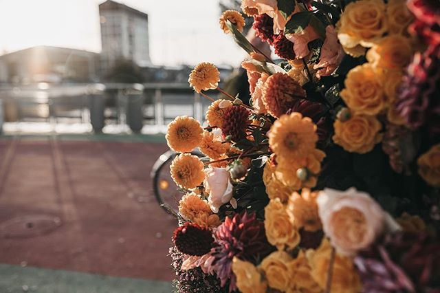 Good morning Amsterdam! ✨🧡 . . . Photo by @liselorestap  #6amflowers #amsterdam #iamsterdam #amsterdamnoord #flowerflash #flowerstyling #nowaste
