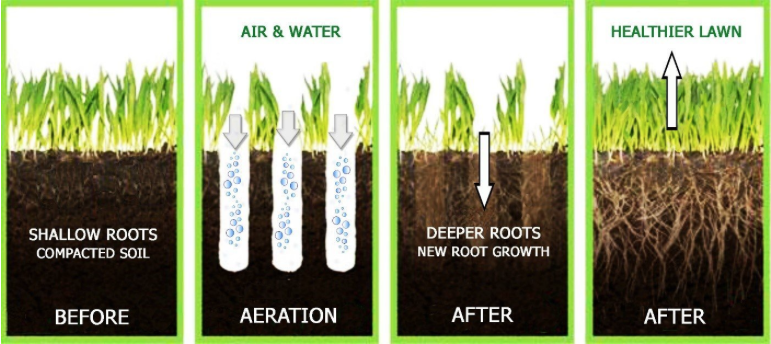 The Benefits of Aerating