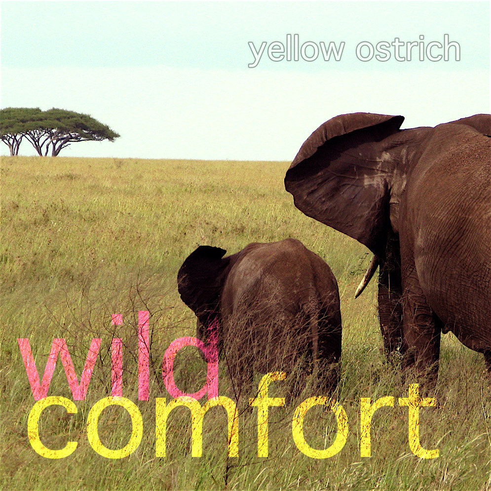Yellow Ostrich - Wild Comfort (2010 LP)