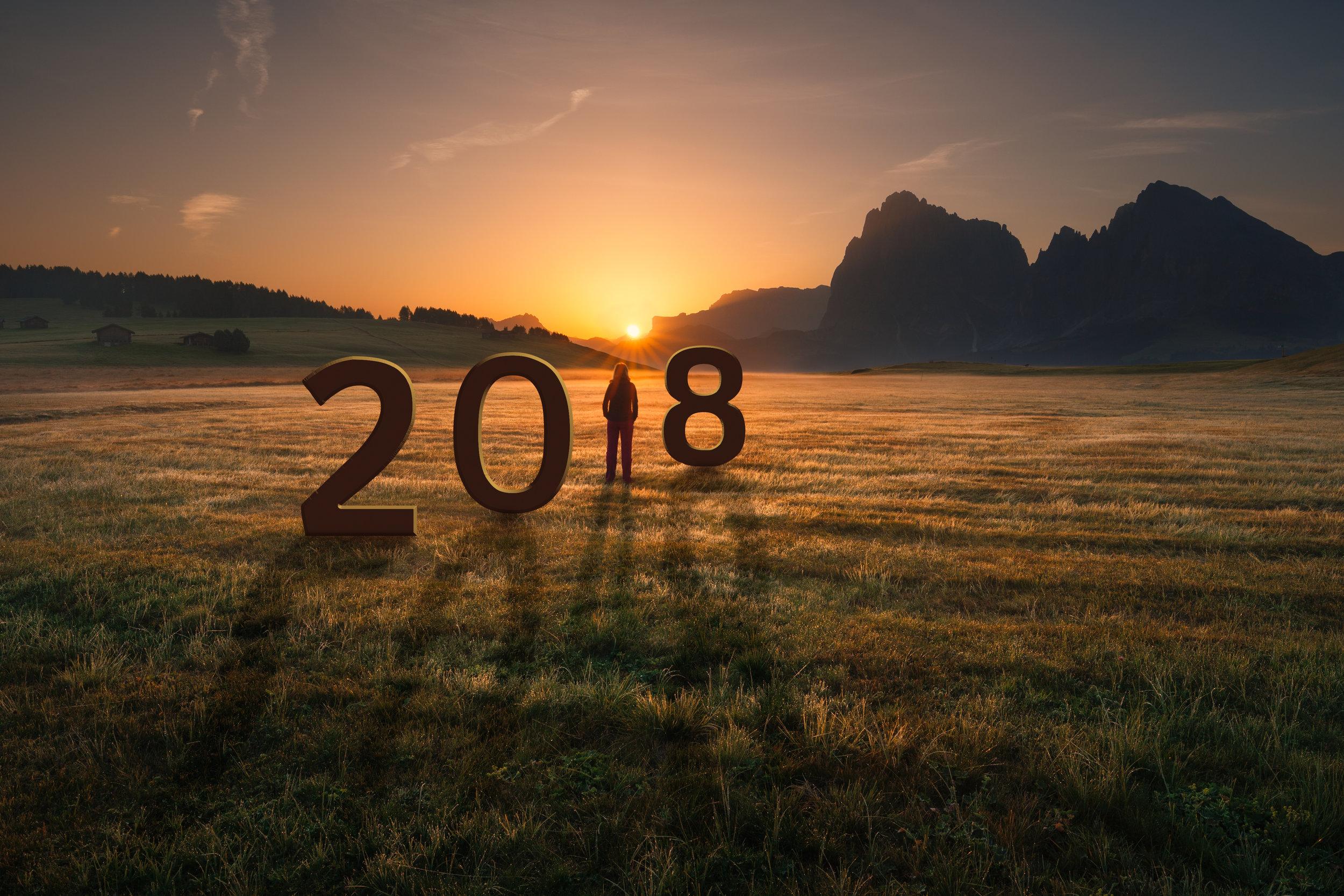 2018-business-landscape