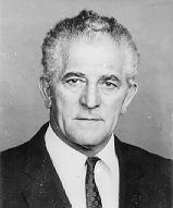 Dénes János, nemzeti radikális munkástanács vezető