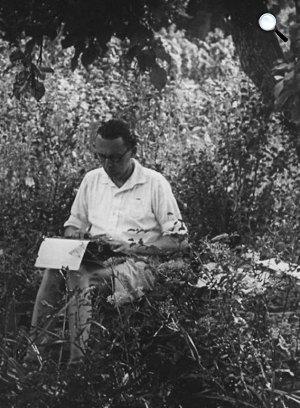 Bibó István Leányfalun, 1944