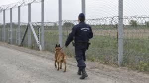 Vasfüggöny helyett szögesdrót. Katonák telepítik a szögesdrót kerítést a horvát határra (nol.hu)