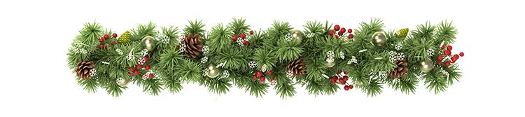 Christmas Banner 2.png